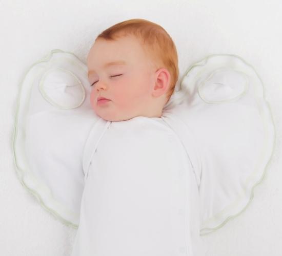 sleepy wings